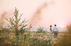 Love the lighting Horse Wedding, Farm Wedding, Rustic Wedding, Dream Wedding, Pomegranate Farming, Pomegranate Wedding, Wedding Venues, Wedding Photos, Wedding Ideas