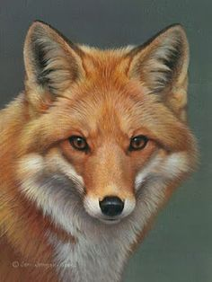 beautiful painting #fox #painting #animals