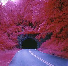 Tanbark Ridge Tunnel, Blue Ridge Parkway, Buncombe County, NC.