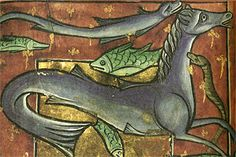 Year: c. Originally appeared in: Ashmole Bestiary hippocamp Medieval Manuscript, Medieval Art, Illuminated Manuscript, Antique Illustration, Cryptozoology, Sea Monsters, Dark Ages, Animal Design, Middle Ages