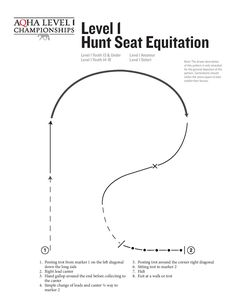 2017 Farnam Level 1 Hunt Seat Equitation Pattern