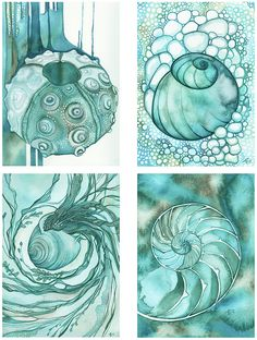 4 Prints by Tamara Phillips - SEA SHELL set in turquoise, four gifts from the sea each to frame or display beautifully, teal aqua marine ocean earth tones