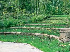 Grass steps provide gentle transition from formal garden to swimming pool in midst of wooded glade.