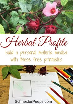 Begin your own materia medica with these free herb profile sheets. They can also be used for essential oil profiles.