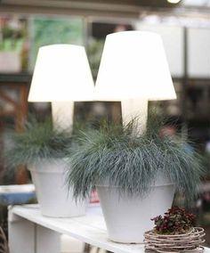 light it up #elho #twilight #design #pure #outdoor #indoor #decoration #light #elhofeeling