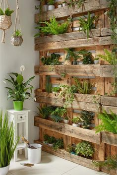 Green wall garden Garden wall House plants decor Indoor garden Diy garden G House Plants Decor, Plant Decor, Garden Wall Designs, Herb Garden Design, Garden Design Ideas, Fence Wall Design, Back Garden Design, Garden Types, Sloped Backyard