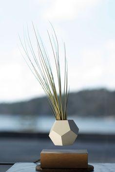 Lyfe floating planter   Simon Morris