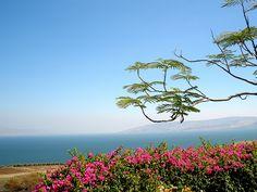 Israel, Galilee