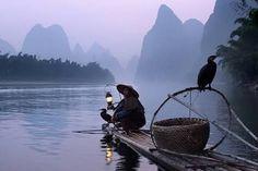 Image result for chinese fishermen using cormorants
