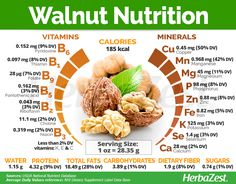 Walnuts are known as a healthy snack, but these dried nuts are also a powerhouse of nutrition and health benefits. Learn all about walnuts, from their medicinal properties to their uses and nutritional value. Nutrition Education, Gym Nutrition, Nutrition Plans, Proper Nutrition, Nutrition Guide, Nutrition Month, Nutrition Classes, Nutrition Quotes, Herbalife Nutrition