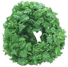 Fern Green Roping - 10 Ft Long | Mary's Dollhouse Miniatures. $9.95