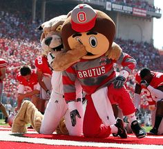 Brutus getting punched! Thats a  Brawling Mascots - Attending the OU vs. OSU rival football game is a must-see experience.  Photo by Aaron Josefczyk/Icon SMI.