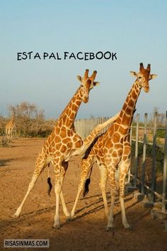 Esta pal Facebook