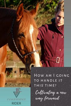 """Over the last couple of weeks, I've been writing about non-judgement and acceptance and self-responsibility; not from the place of having the answers or """"getting it right"""" (man alive, definitely not from that place!), but from the place of practice.  >> Confident Rider - mindset, movement and nervous system awareness for equestrians Emotional Resilience, Training Exercises, Man Alive, Nervous System, Acceptance, Equestrian, Confident, Mindset, Self"""