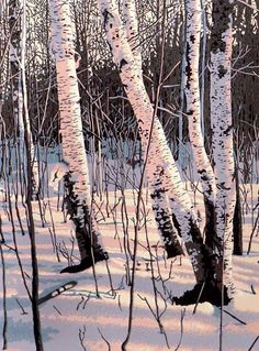 """Paper Shadows"" 6-colour linocut by William Hays. http://www.theartistsloft.com/. Tags: Linocut, Cut, Print, Linoleum, Lino, Carving, Block, Woodcut, Helen Elstone, Birches, Trees, Woods, Snow, Winter, Shadows."