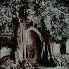 The witches hut Character Aesthetic, Aesthetic Photo, Slytherin, Spirit Fanfic, Medieval, Prince Charmant, Wattpad, Chronicles Of Narnia, Disney Films