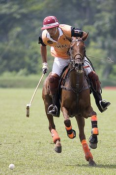 Polo. The riding instructor I used to learn under, Mrs. Angela, loves polo. GO Mrs. Angela!  :D