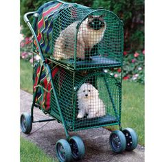Kittywalk Double Decker Pet Stroller - Overstock Shopping - The Best Prices on Kittywalk Cat Furniture Cat Stroller, Animals And Pets, Cute Animals, Baby Animals, Funny Animals, Cat Cages, Hamster, Cat Carrier, Puppy Carrier