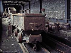 Zwei Hunte im Wagenumlauf Zollverein Schacht 1/2