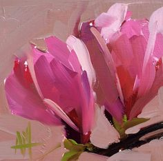 Magnolia Blossoms no. 14 original floral oil painting by Angela Moulton 5 x 5 inch on birch plywood panel