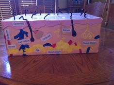 3d integumentary system project - Google Search