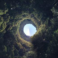 """radioactivevikings: """"#rabbithole #wonderland by HabitForming on Flickr. """""""