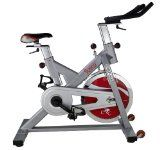 Sunny Health & Fitness SF-B1110S Indoor Cycling Bike, Silver