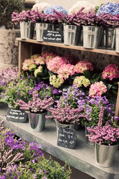 small buckets of flowers all in a row with mini slate signs #chalk #handwritten