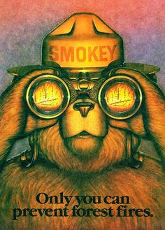 Smokey The Bear - Only You Can Prevent Forest Fires - 1987 - Promotional Poster Wildland Firefighter, Smokey The Bears, Propaganda Art, Fire Prevention, Nature Posters, Advertising Poster, Vintage Ads, Vintage Travel, Illustration
