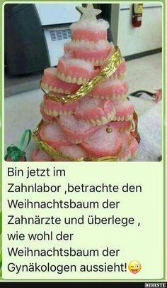Bin jetzt im Zahnlabor, betrachte den Weihnachtsbaum.. | Lustige Bilder, Sprüche, Witze, echt lustig