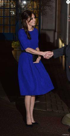 Kate Middleton, duchesse de Cambridge, prenait part le 17 novembre 2015 au gala annuel des Fostering Excellence Awards décernés par l'association The Fostering Network, à Londres, vêtue d'une robe Saloni.
