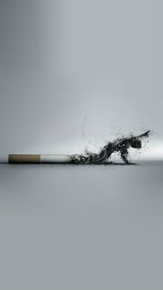 My iPhone 5 Wallpaper - the one I just liked! anti smoking Smoking kills, stop encouraging people to smoke! Is wrong! Smoke Wallpaper, Iphone 5 Wallpaper, Die Wallpaper, Wallpapers Ipad, Smoke Drawing, Smoke Art, Smoking Kills, Anti Smoking, Ads Creative