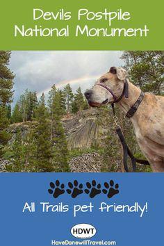 Devils Postpile National Monument is a 4-paw park.  Pet friendly!  #greatdane #petfriendly #nationalparkdogs #hikingwithgreatdane #havedanewilltravel #devilspostpilenationalmonument Dog Breeds Little, Big Dog Breeds, Big Dogs, Dogs And Puppies, Dog Booties, Dog Organization, Dog Travel, Travel Tips, Beaded Dog Collar