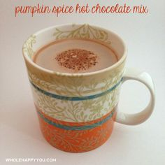 Pumpkin Spice Hot Chocolate Mix