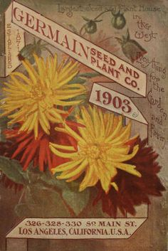 ... annual catalogue / Germain Fruit Co :: Nursery and Seed Catalogs