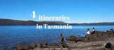 Find out your Tasmania itinerary and get road trip ideas - from 3 to 21 days road trip itineraries, I help you to plan your trip across Tasmanian nature! Budget Travel, Travel Tips, Tasmania Travel, Forest Cottage, Farm Stay, Self Driving, Backpacking, Travel Destinations, Road Trip