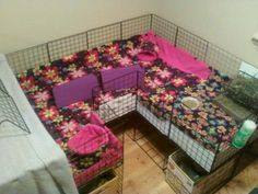 I want this cage for my guinea pig!!