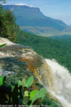 Guiana Highlands, Canaima National Park, Bolivar, Venezuela