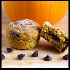 Cupcake Recipes : Chocolate Chip Pumpkin Muffins : Dessert Recipes