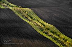 Moravian fields by Harb1