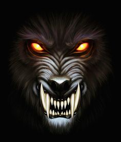 Find Angry Werewolf Face Darkness Digital Painting stock images in HD and millions of other royalty-free stock photos, illustrations and vectors in the Shutterstock collection. Werewolf Tattoo, Werewolf Art, Lion Wallpaper, Skull Wallpaper, Dark Fantasy Art, Dark Art, Angry Wolf, Angry Animals, Wolf Images