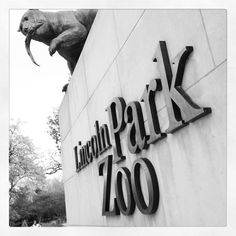 You can't not visit Lincoln Park Zoo when you're in Chicago. Be sure to scope out Boardwalk in Bloom or the seasonal decorations. Snap a photo & tag with #EXPCityLife – we'd love to see!