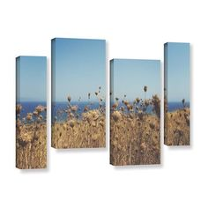ArtWall Close Up Field by Revolver Ocelot 4 Piece Photographic Print on Wrapped Canvas Staggered Set Size: