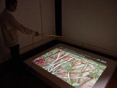 """03. Um dos projetos é o jogo inspirado na caça dos Aratus. Atividade de subsistência para o povo do Sergipe, ela foi transformada em um jogo que ensina formas não predatórias nessa prática. A instalação interativa, foi feita a partir de uma grande tela e uma """"vara"""" de pesca com led luminoso na ponta e está sendo adaptada para dispositivos móveis.   Um video com um tour pelo museu onde o jogo foi instalado: http://www.youtube.com/watch?v=0KoPAgnHXyU"""