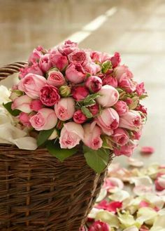 Pink Flowers : Basket of Fresh Cut Roses - Flowers.tn - Leading Flowers Magazine, Daily Beautiful flowers for all occasions My Flower, Pretty Flowers, Fresh Flowers, Pink Roses, Pink Flowers, Pink Tulips, Roses Roses, Deco Floral, Colorful Roses