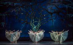 Después de diversos esfuerzos, en 1959 se creó el Ballet de Arte Moderno dirigido por Octavio Cintolesi y al poco tiempo, éste se transformó en cuerpo estable del Municipal. Desde sus inicios este cuerpo incorporó la técnica clásica, integrando elementos de danza moderna y propuestas nacionales. En 1982 Iván Nagy tomó la dirección del Ballet […]