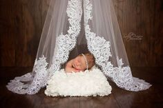 Sally Prisco Photography - Newborn and Family New York Photographers billede.