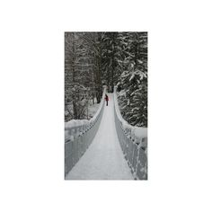 Rose Briar - theenchantedcove: From imgfave.com ❤ liked on Polyvore featuring backgrounds, photos and winter