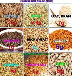 Healthful Diet And Nutrition: Protein Rich Grains.