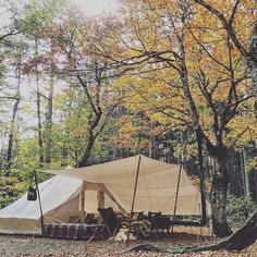 bell tent & canopy #Autumn